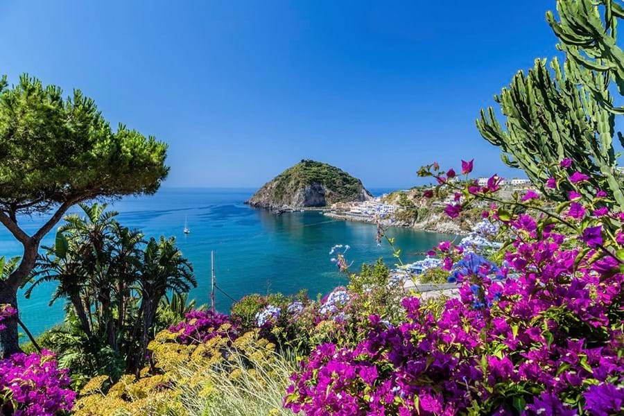 Bougainvillea frames this image of Sant'Angelo on Ischia